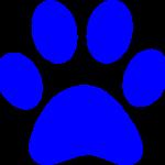 panther-paw